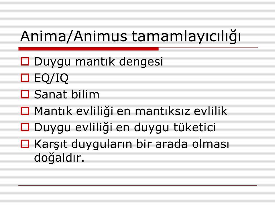 Anima/Animus tamamlayıcılığı