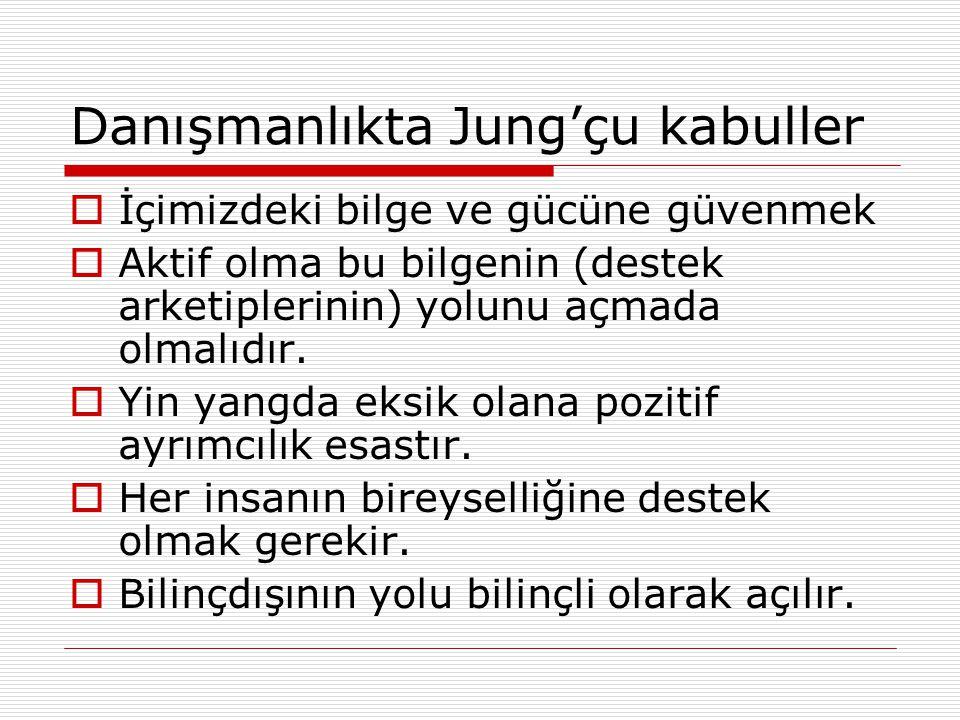 Danışmanlıkta Jung'çu kabuller