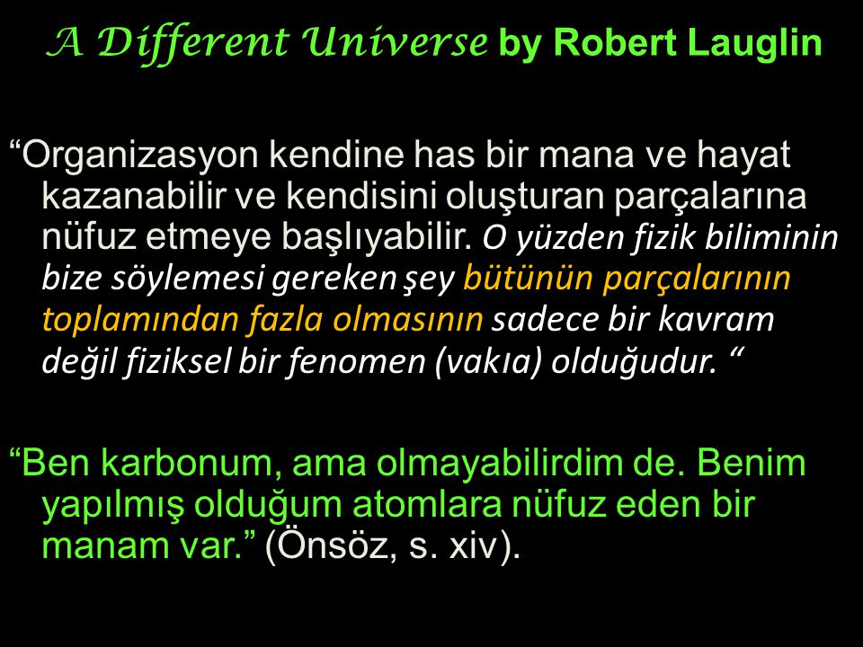 A Different Universe by Robert Lauglin