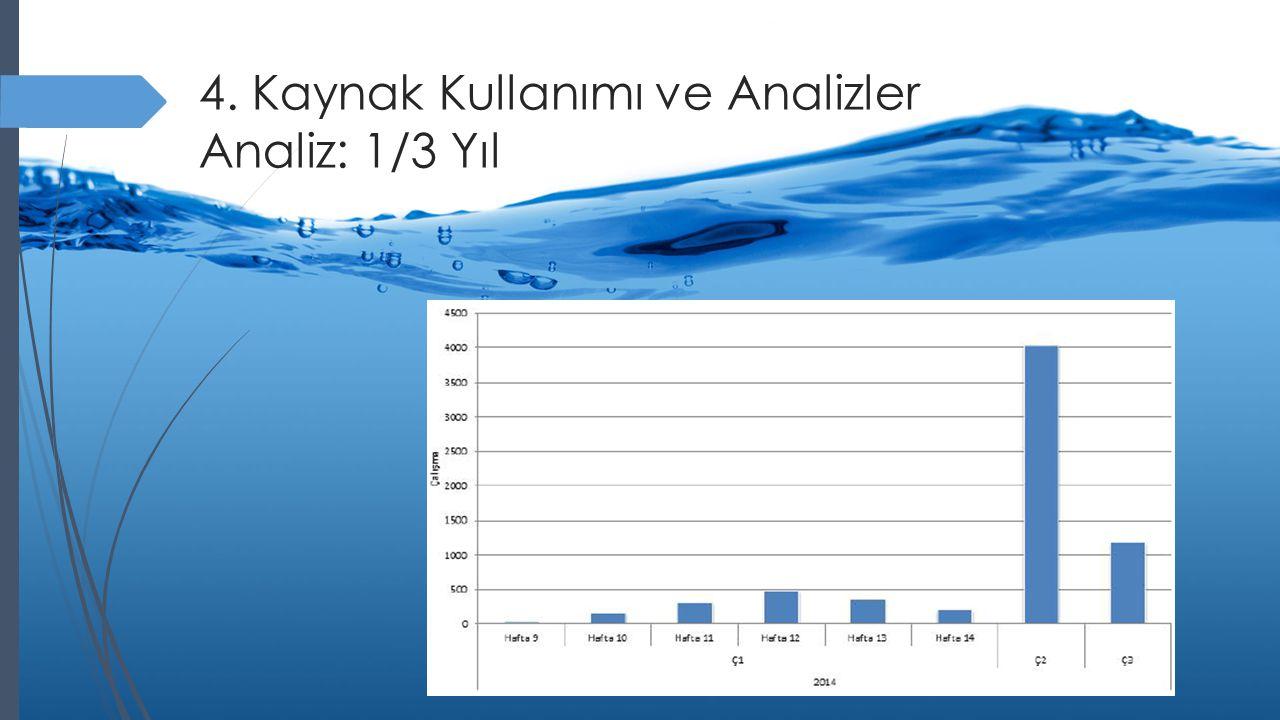 4. Kaynak Kullanımı ve Analizler Analiz: 1/3 Yıl