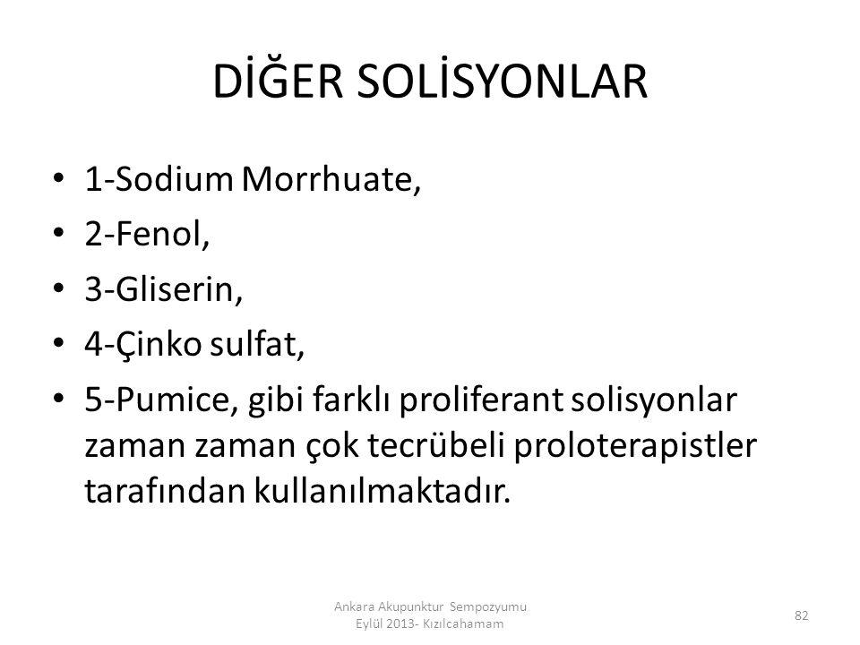 Ankara Akupunktur Sempozyumu Eylül 2013- Kızılcahamam