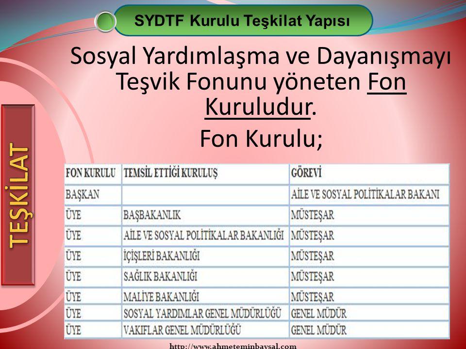 SYDTF Kurulu Teşkilat Yapısı
