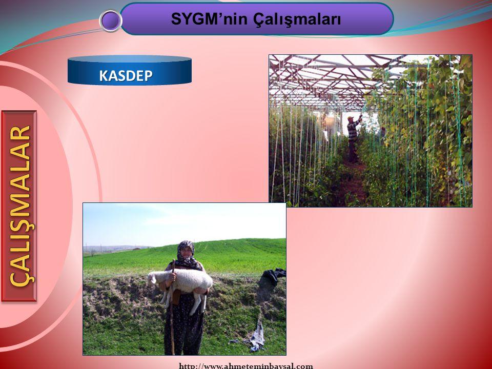 SYGM'nin Çalışmaları KASDEP ÇALIŞMALAR http://www.ahmeteminbaysal.com