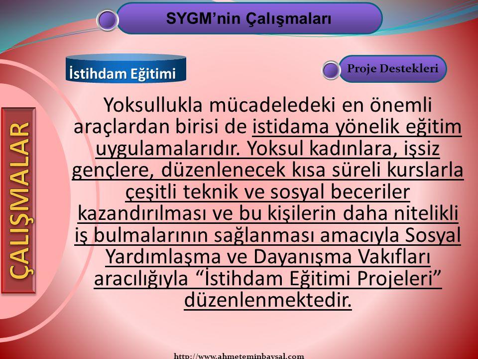 SYGM'nin Çalışmaları İstihdam Eğitimi. Proje Destekleri.