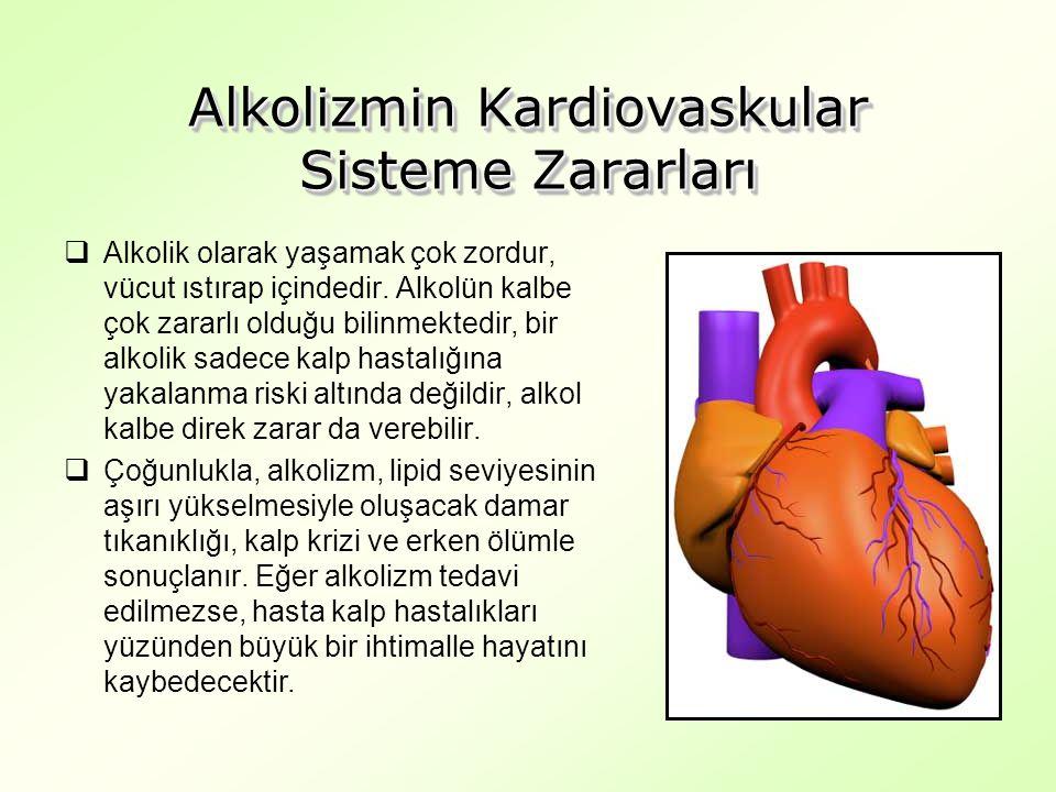 Alkolizmin Kardiovaskular Sisteme Zararları