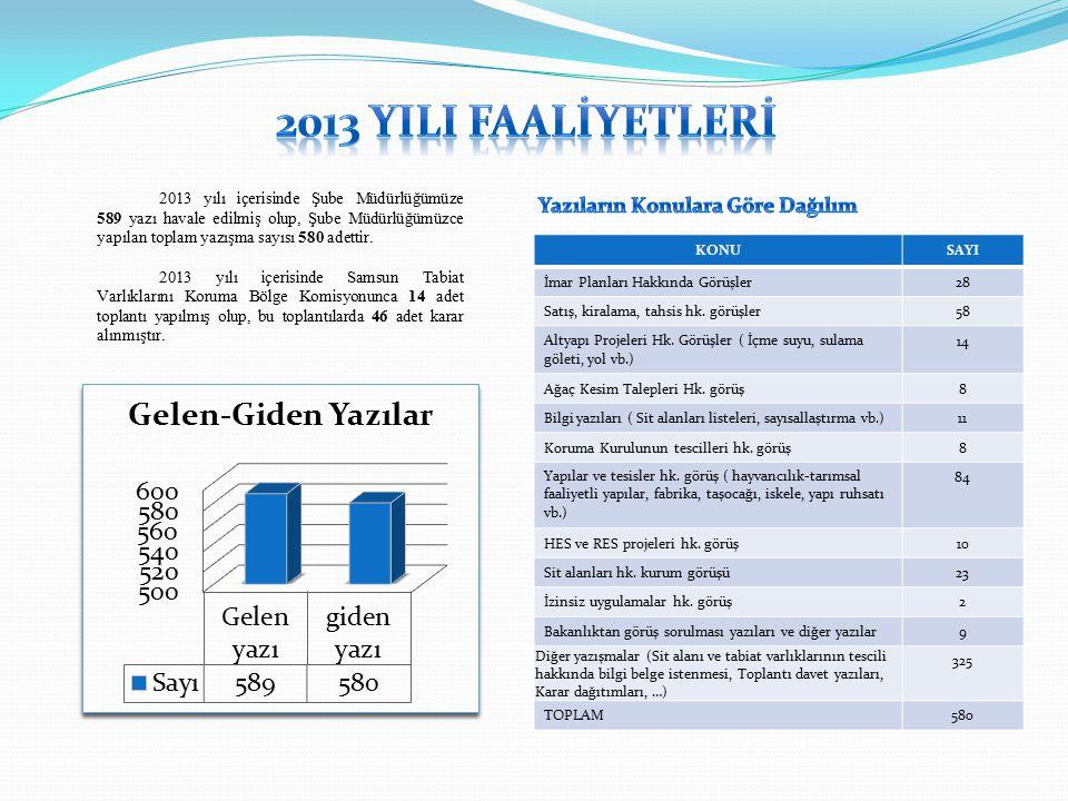 2013 YIlI Faalİyetlerİ Yazıların Konulara Göre Dağılım