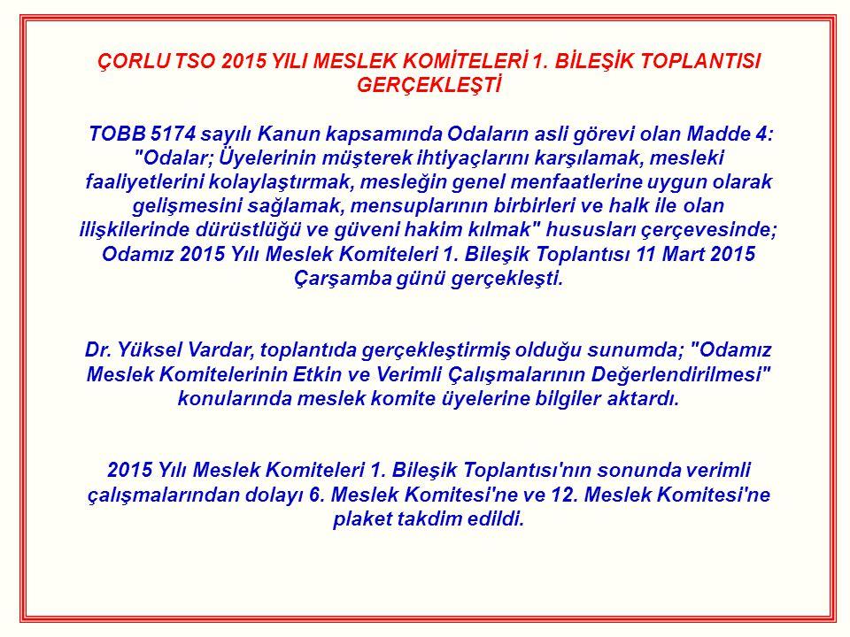 ÇORLU TSO 2015 YILI MESLEK KOMİTELERİ 1. BİLEŞİK TOPLANTISI GERÇEKLEŞTİ