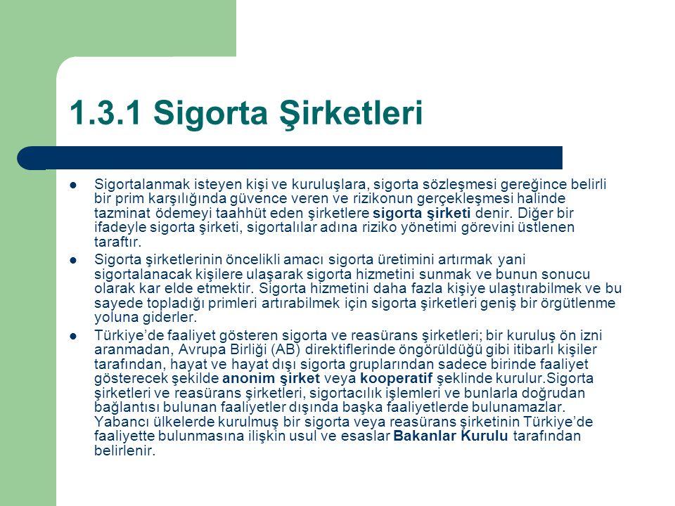 1.3.1 Sigorta Şirketleri