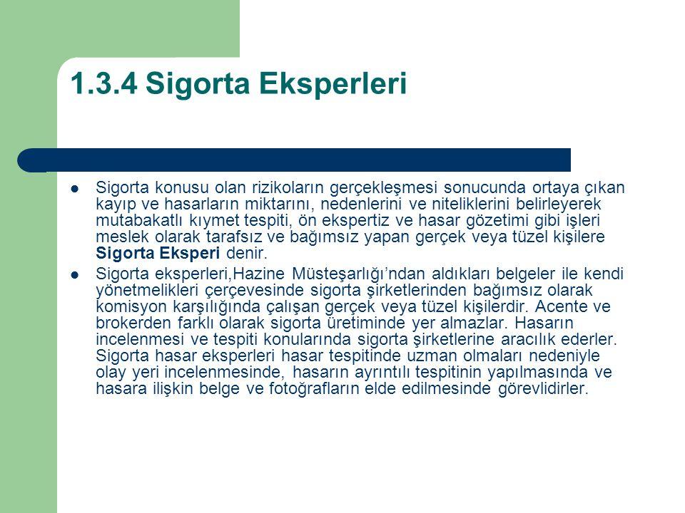 1.3.4 Sigorta Eksperleri