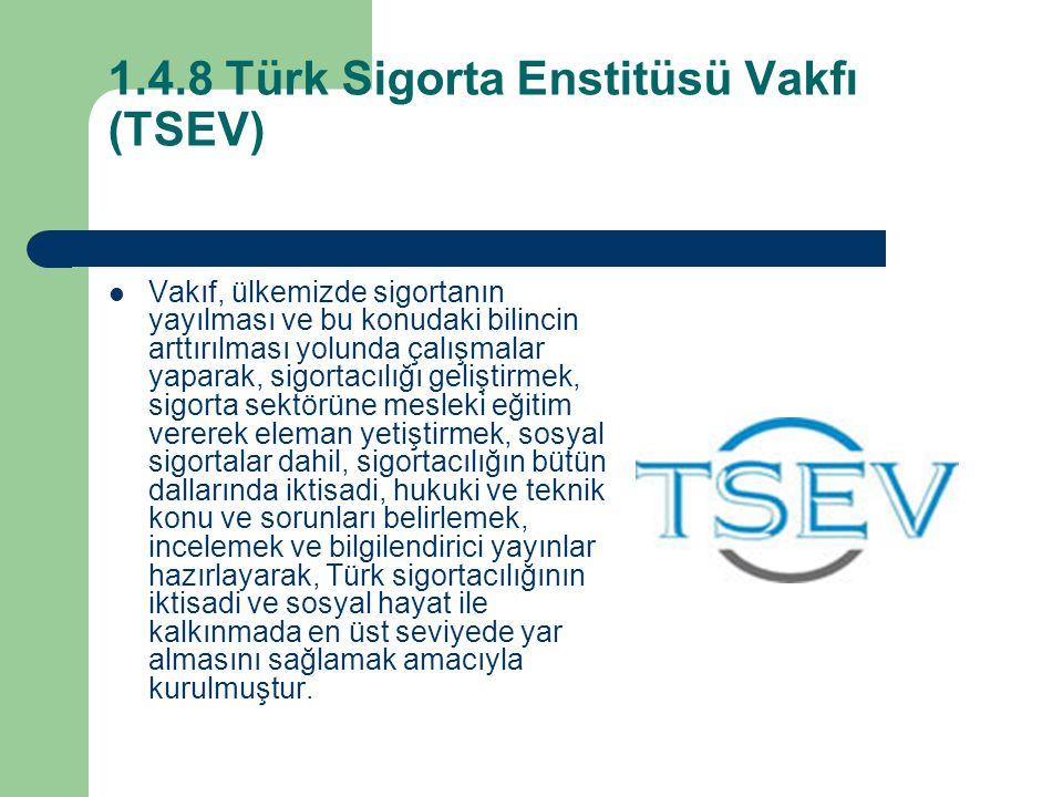 1.4.8 Türk Sigorta Enstitüsü Vakfı (TSEV)
