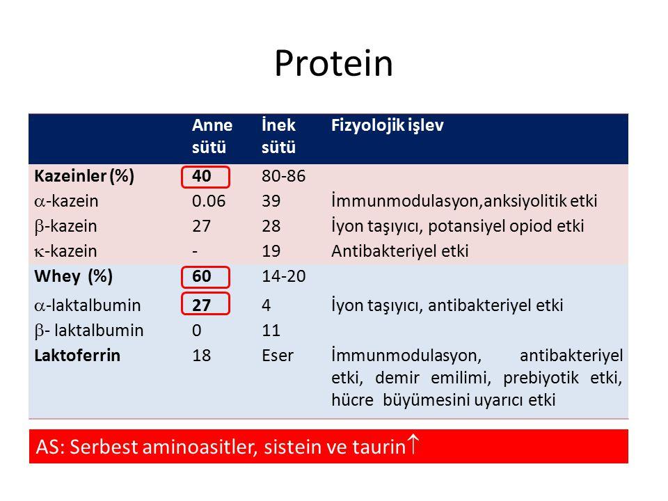 Protein AS: Serbest aminoasitler, sistein ve taurin Anne sütü