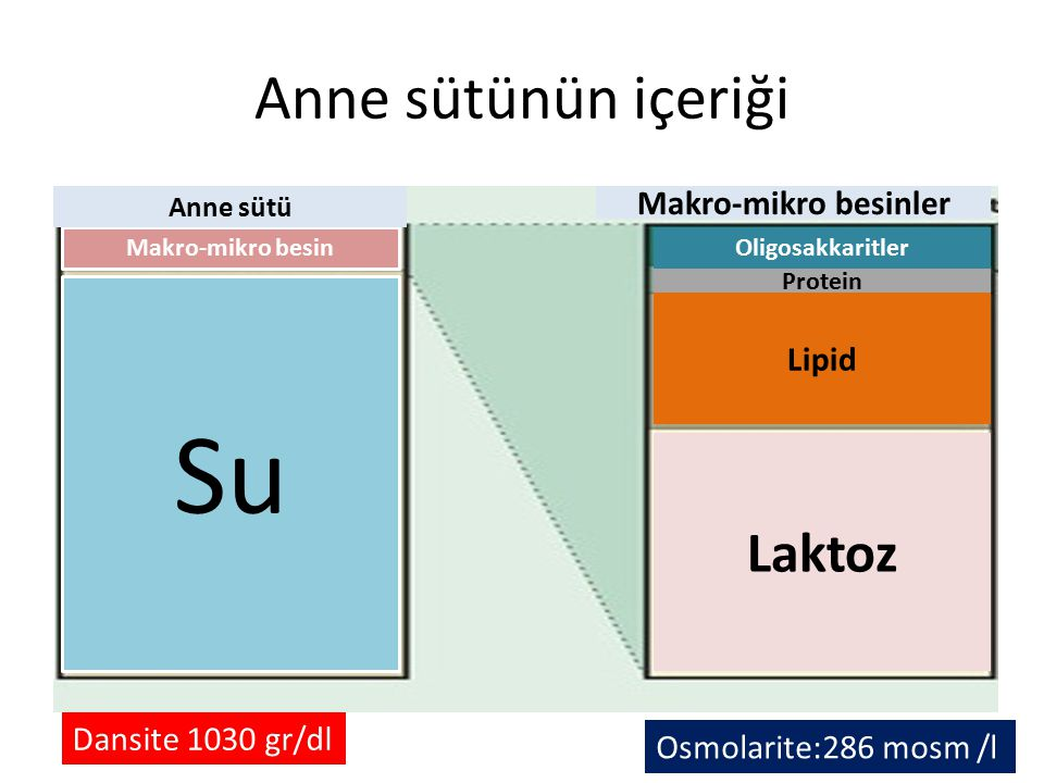 Su Anne sütünün içeriği Laktoz Makro-mikro besinler Lipid
