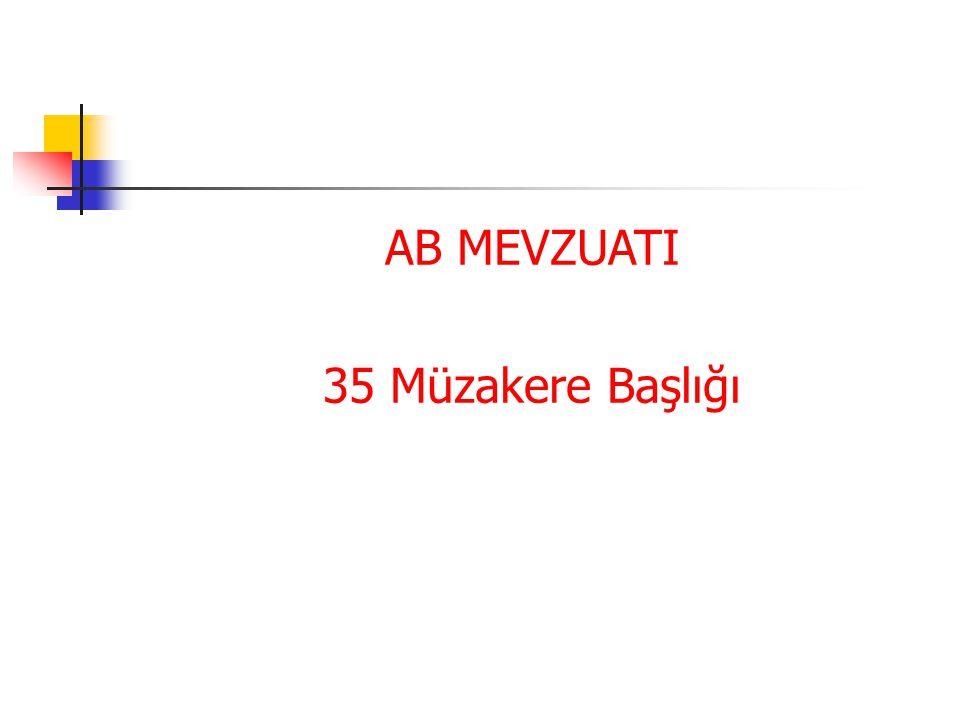 AB MEVZUATI 35 Müzakere Başlığı