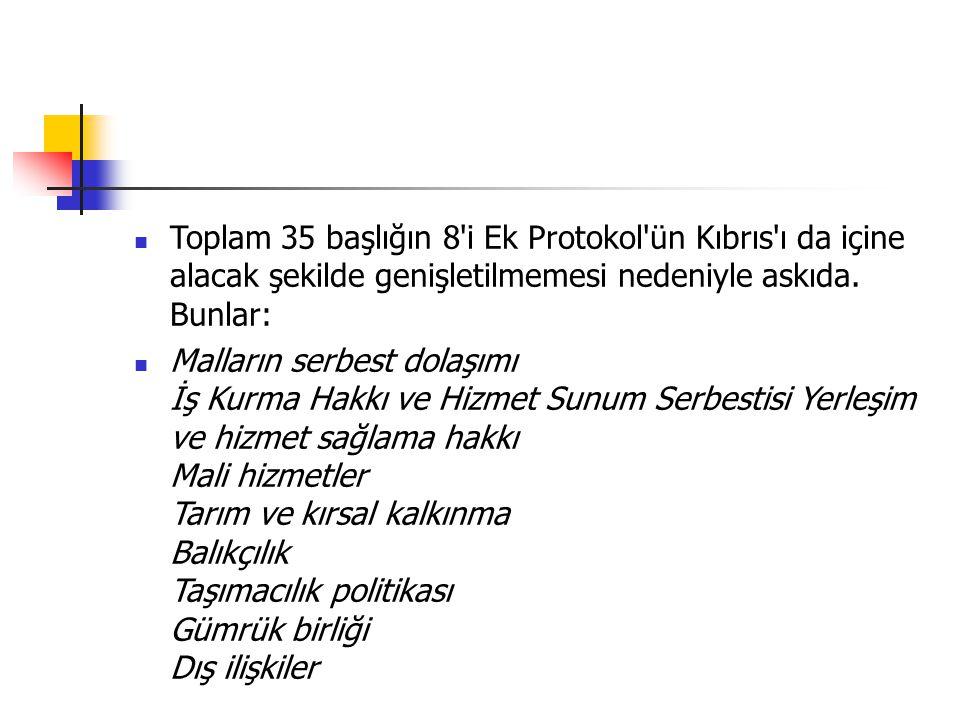 Toplam 35 başlığın 8 i Ek Protokol ün Kıbrıs ı da içine alacak şekilde genişletilmemesi nedeniyle askıda. Bunlar: