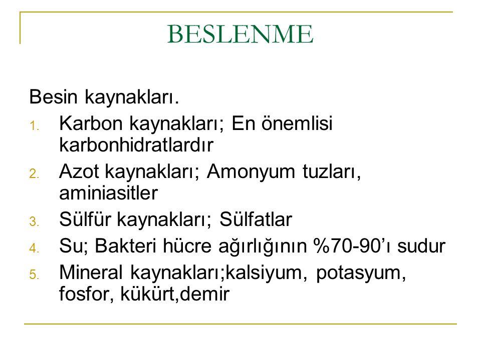 BESLENME Besin kaynakları.