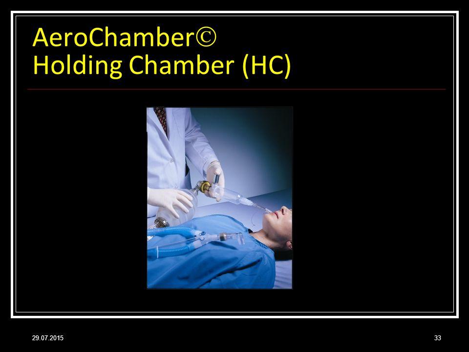 AeroChamber Holding Chamber (HC)