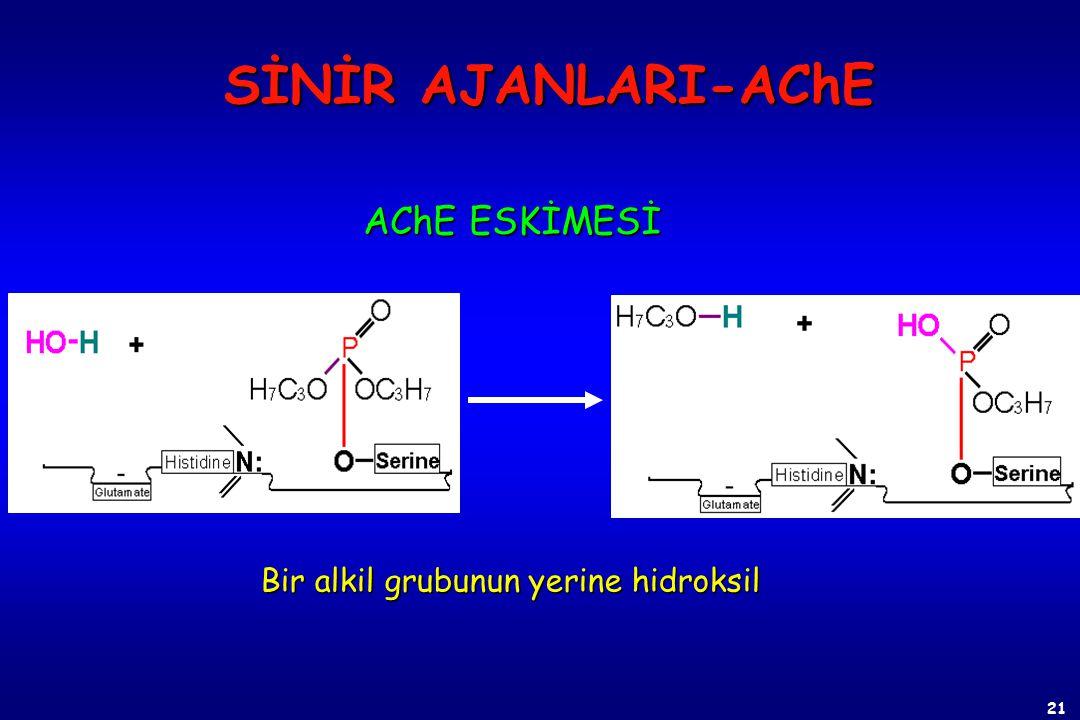 SİNİR AJANLARI-AChE AChE ESKİMESİ Bir alkil grubunun yerine hidroksil
