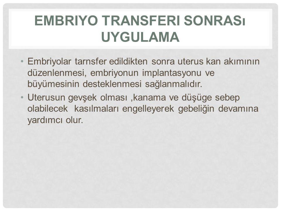 Embriyo transferi sonrası uygulama