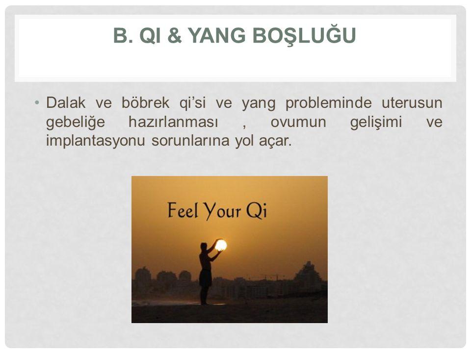 B. Qi & yang BOŞLUĞU