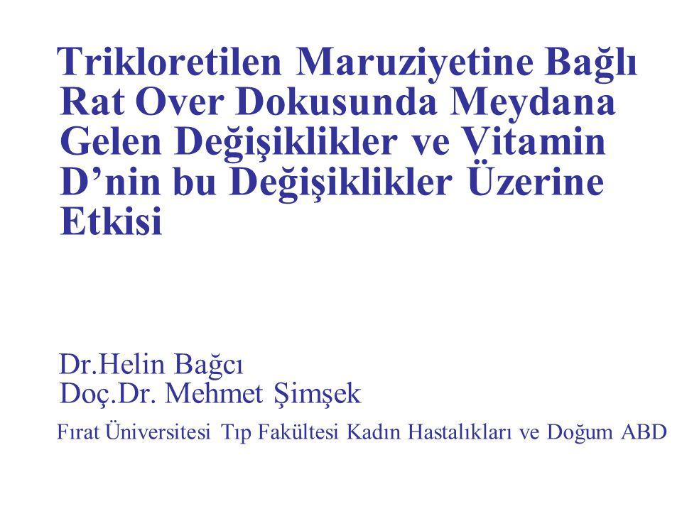 Dr.Helin Bağcı Doç.Dr. Mehmet Şimşek