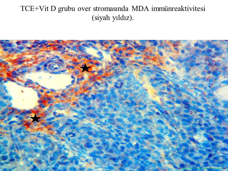 TCE+Vit D grubu over stromasında MDA immünreaktivitesi (siyah yıldız).