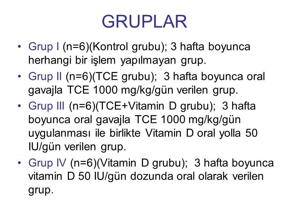 GRUPLAR Grup I (n=6)(Kontrol grubu); 3 hafta boyunca herhangi bir işlem yapılmayan grup.