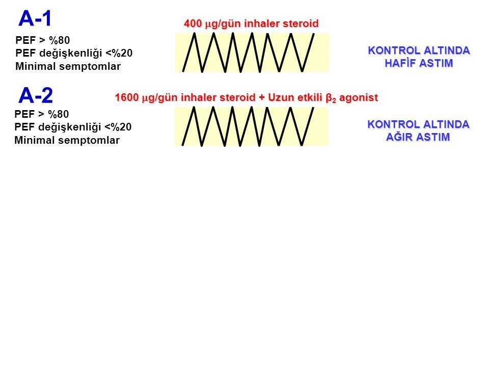 A-1 A-2 400 g/gün inhaler steroid PEF > %80