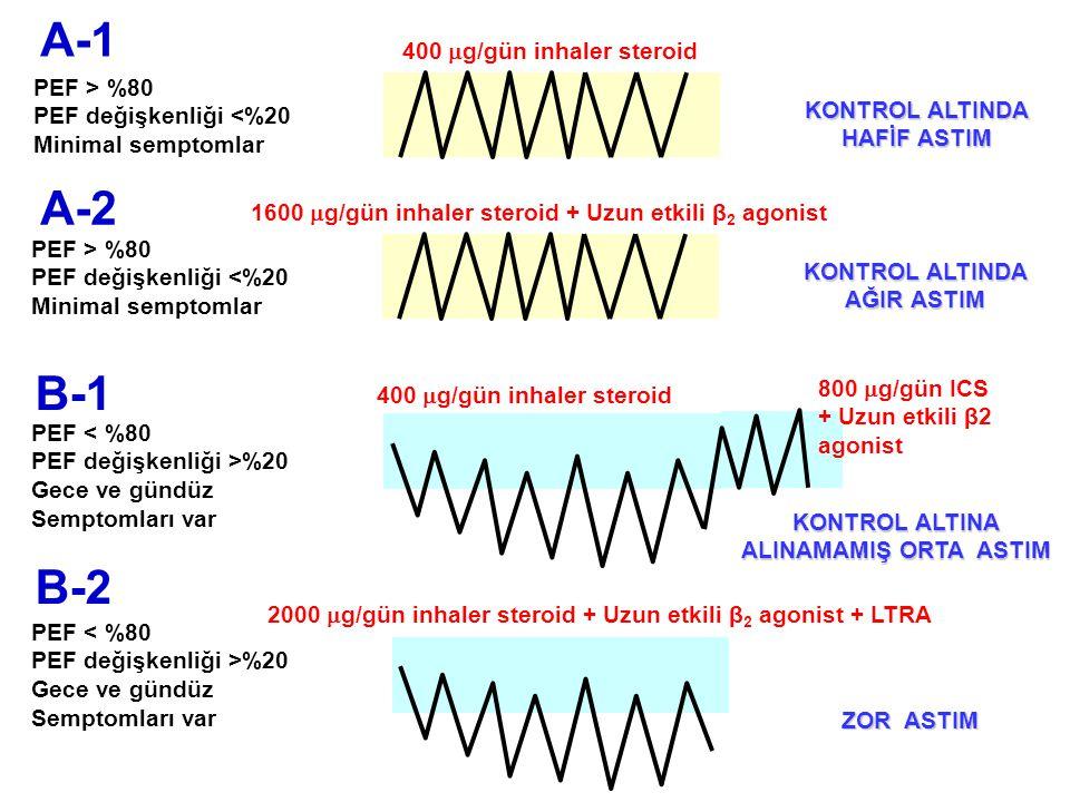 A-1 A-2 B-1 B-2 400 g/gün inhaler steroid PEF > %80