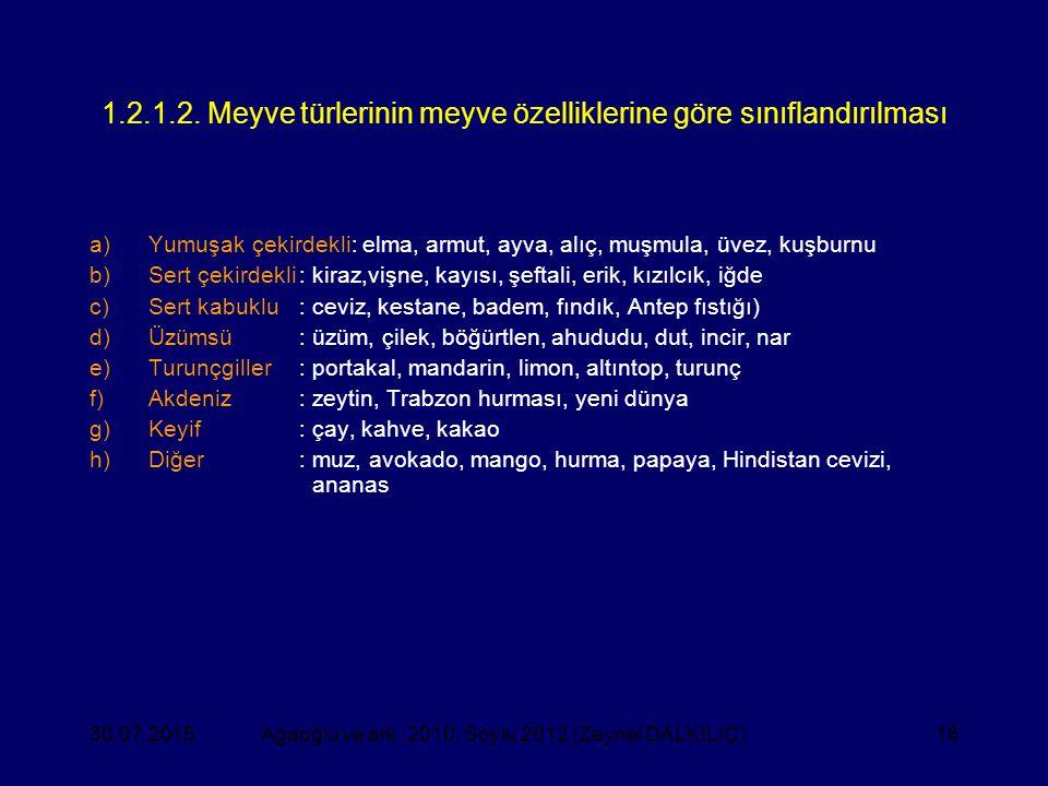1.2.1.2. Meyve türlerinin meyve özelliklerine göre sınıflandırılması