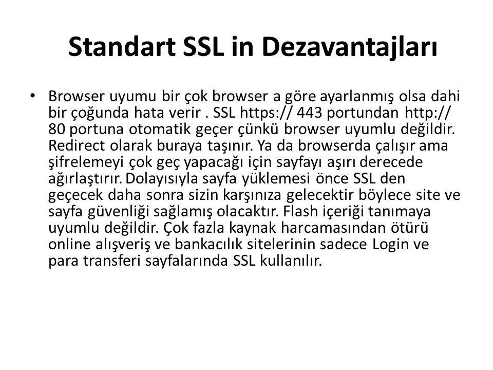Standart SSL in Dezavantajları