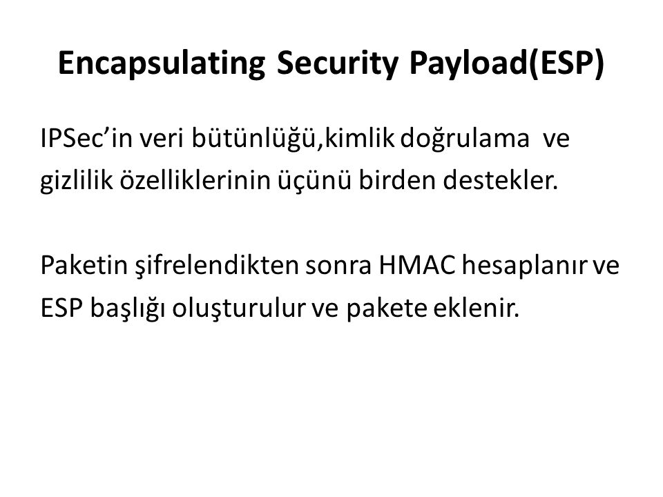 Encapsulating Security Payload(ESP)