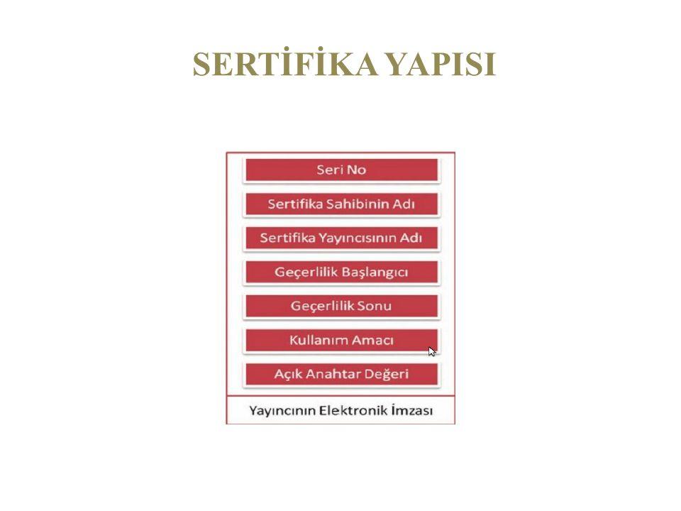 SERTİFİKA YAPISI