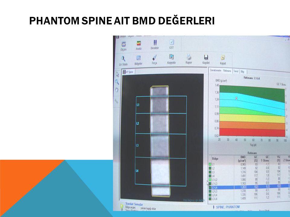 Phantom Spine ait BMD değerleri