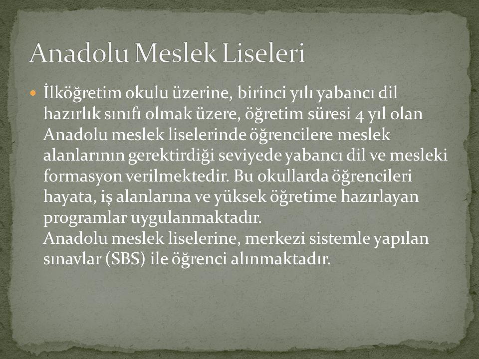 Anadolu Meslek Liseleri