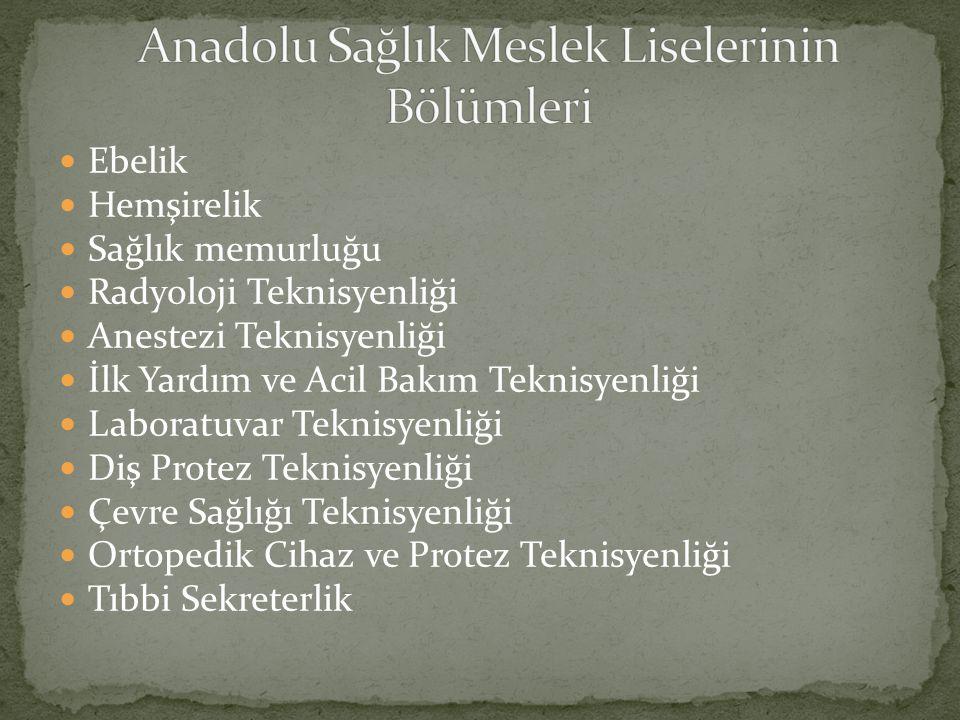 Anadolu Sağlık Meslek Liselerinin Bölümleri