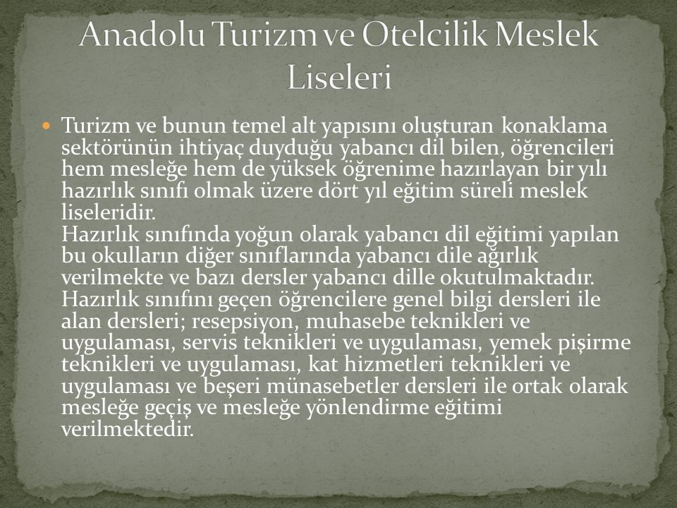 Anadolu Turizm ve Otelcilik Meslek Liseleri