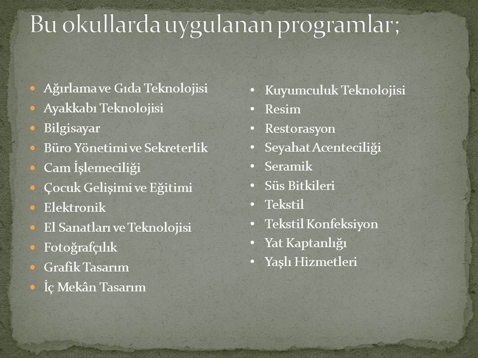 Bu okullarda uygulanan programlar;