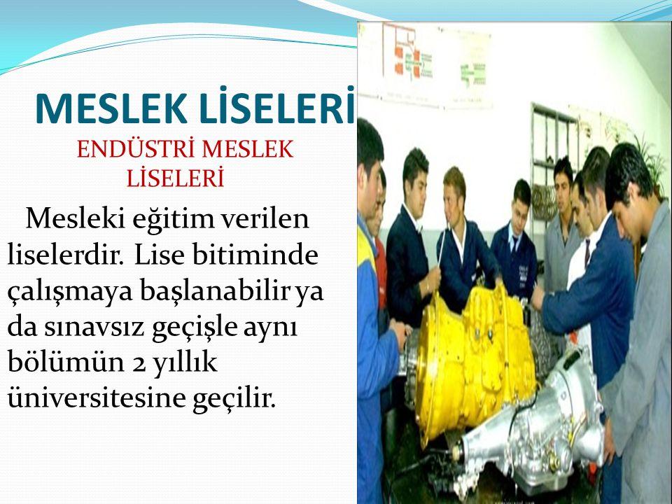 MESLEK LİSELERİ