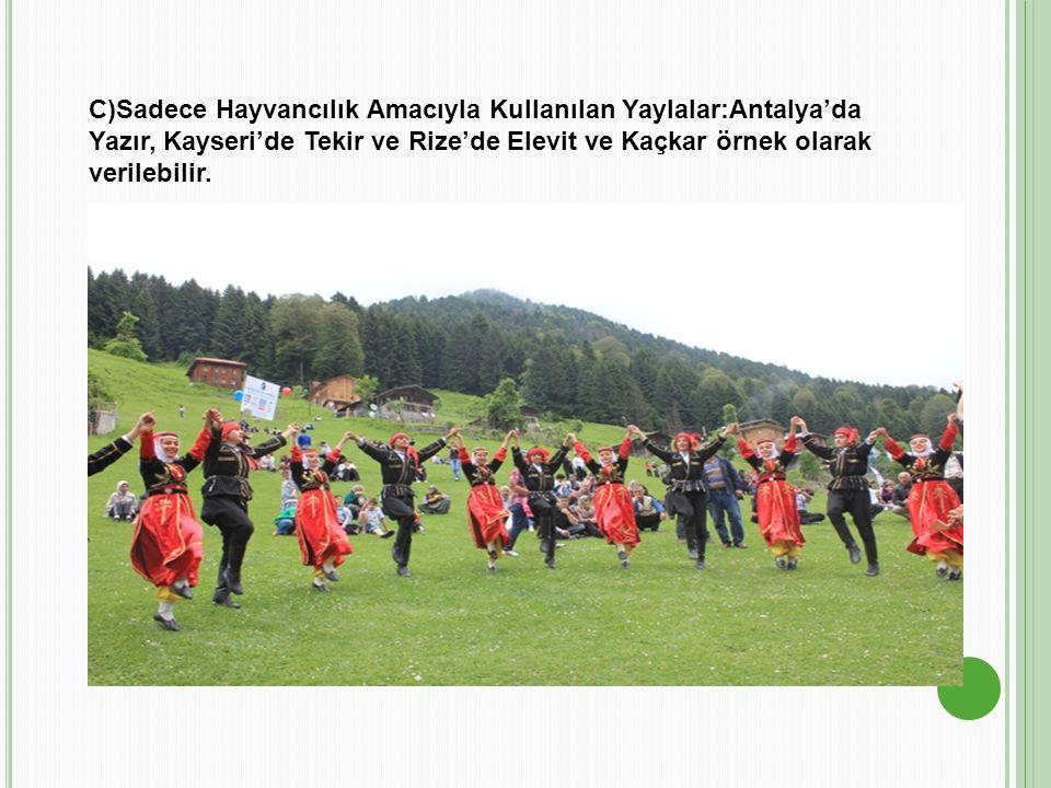 C)Sadece Hayvancılık Amacıyla Kullanılan Yaylalar:Antalya'da Yazır, Kayseri'de Tekir ve Rize'de Elevit ve Kaçkar örnek olarak verilebilir.