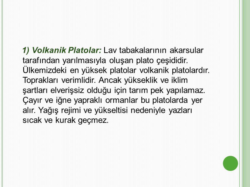 1) Volkanik Platolar: Lav tabakalarının akarsular tarafından yarılmasıyla oluşan plato çeşididir.