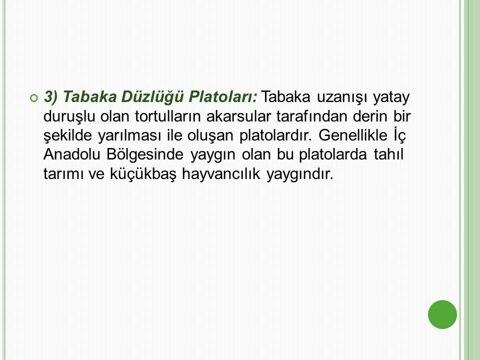 3) Tabaka Düzlüğü Platoları: Tabaka uzanışı yatay duruşlu olan tortulların akarsular tarafından derin bir şekilde yarılması ile oluşan platolardır.
