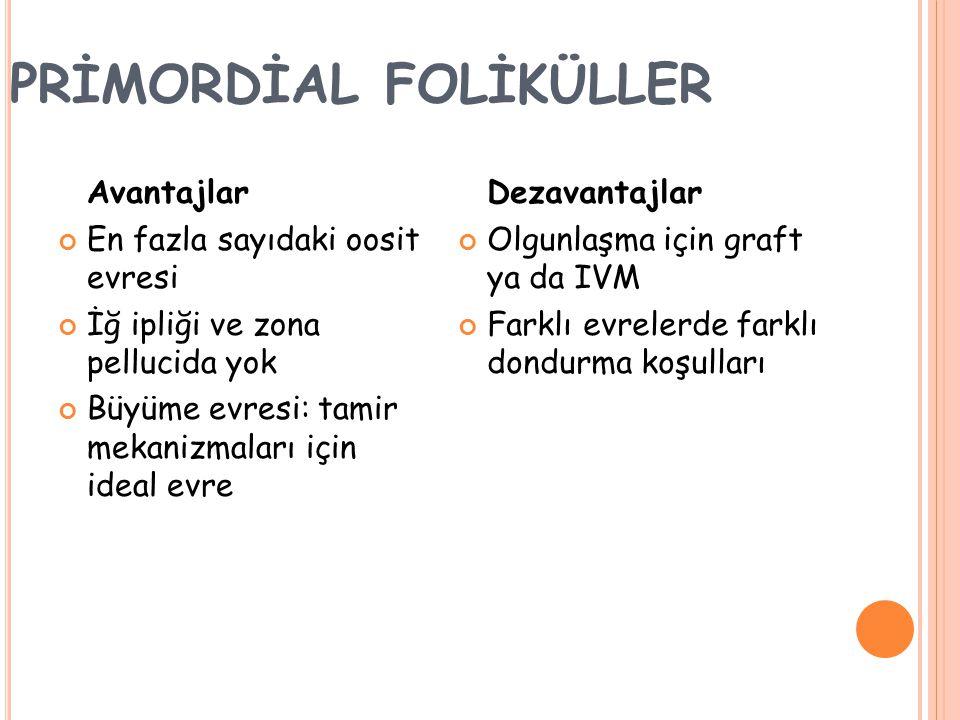 PRİMORDİAL FOLİKÜLLER