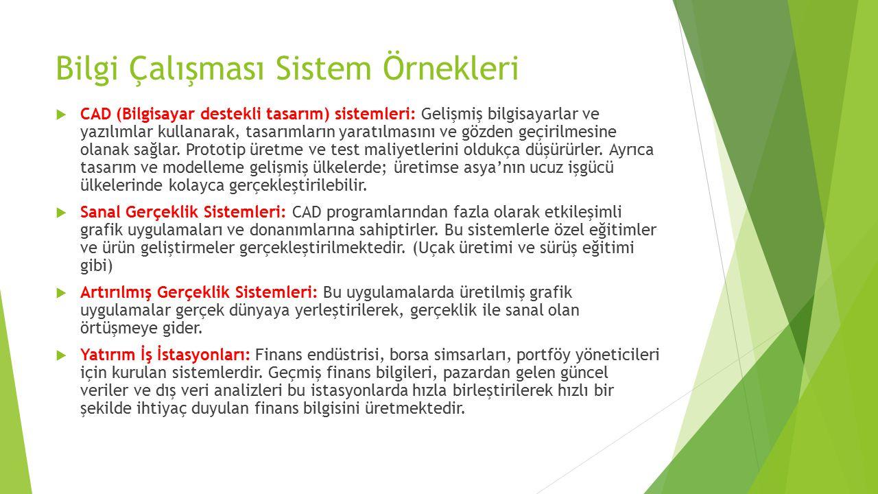 Bilgi Çalışması Sistem Örnekleri