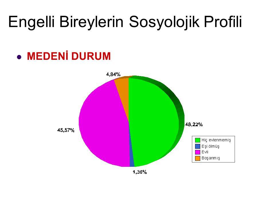 Engelli Bireylerin Sosyolojik Profili