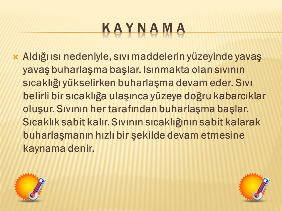 K A Y N A M A