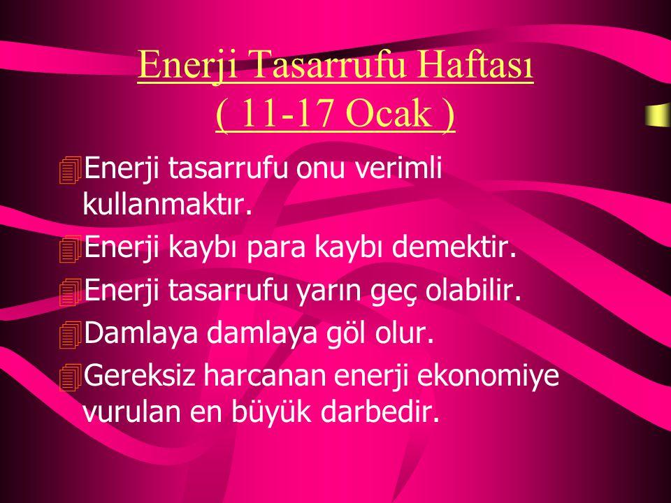 Enerji Tasarrufu Haftası ( 11-17 Ocak )