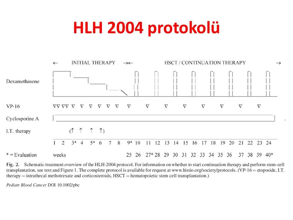 HLH 2004 protokolü