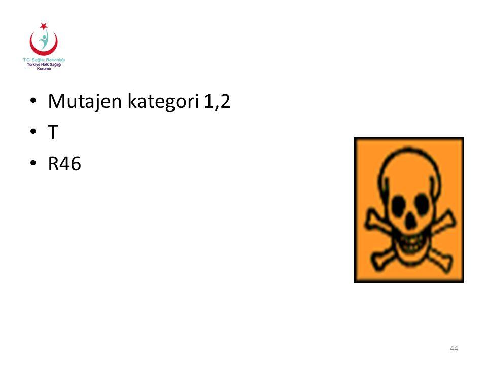 Mutajen kategori 1,2 T R46