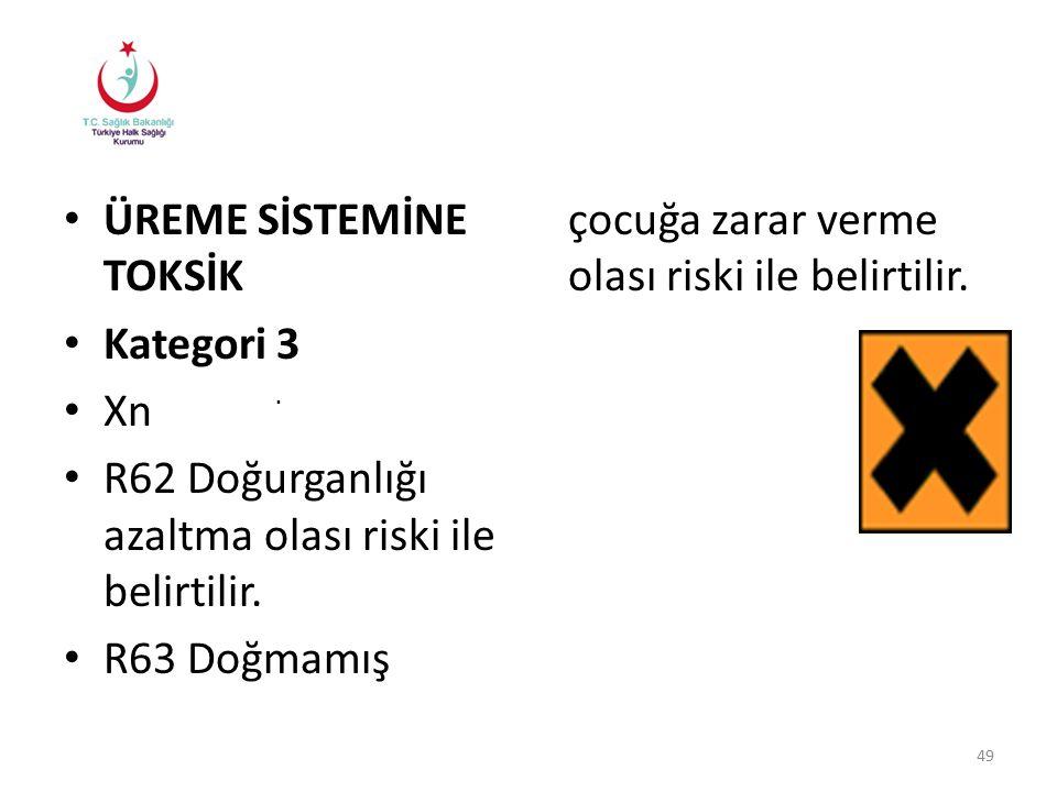 R63 Doğmamış çocuğa zarar verme olası riski ile belirtilir.