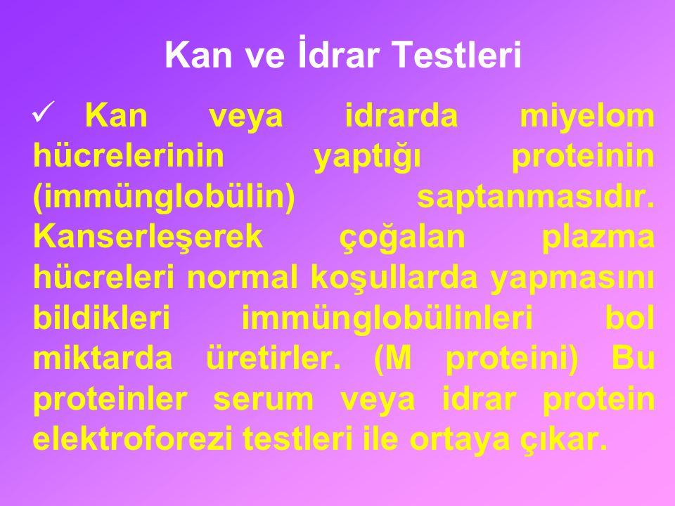 Kan ve İdrar Testleri